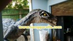 buat kostum raptor jurassic world